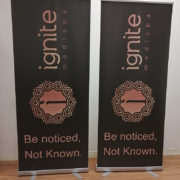 pullup banners 8